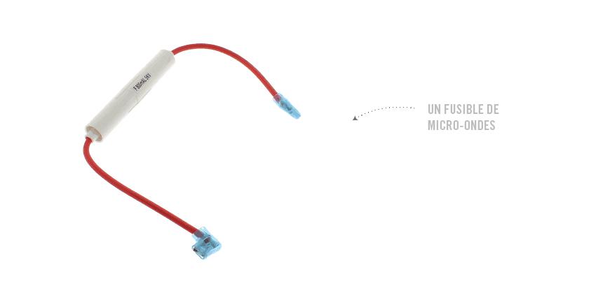 Un fusible de micro-ondes